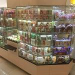 белевские сладости